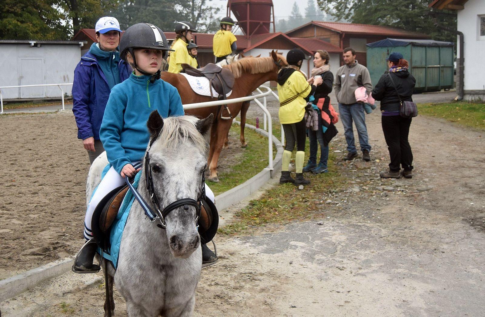 pony-profit-11