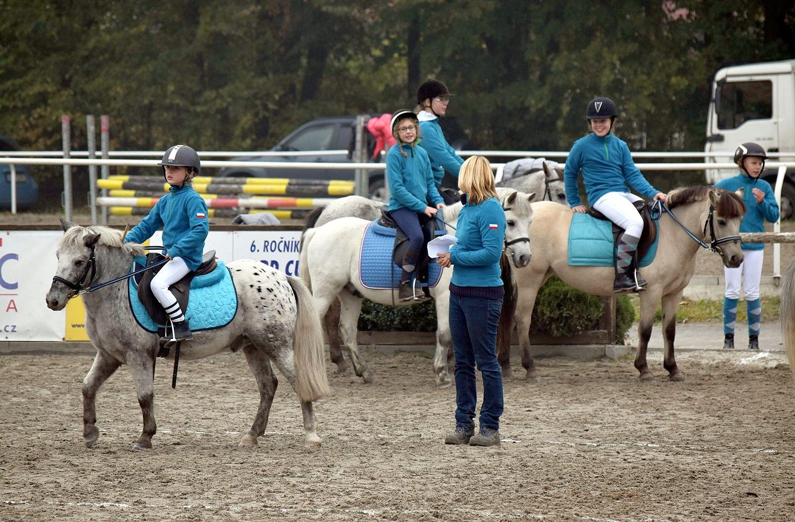 pony-profit-12