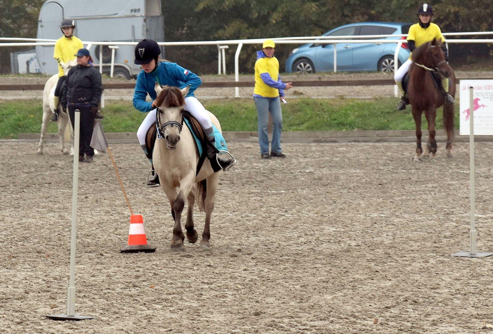 pony-profit-14
