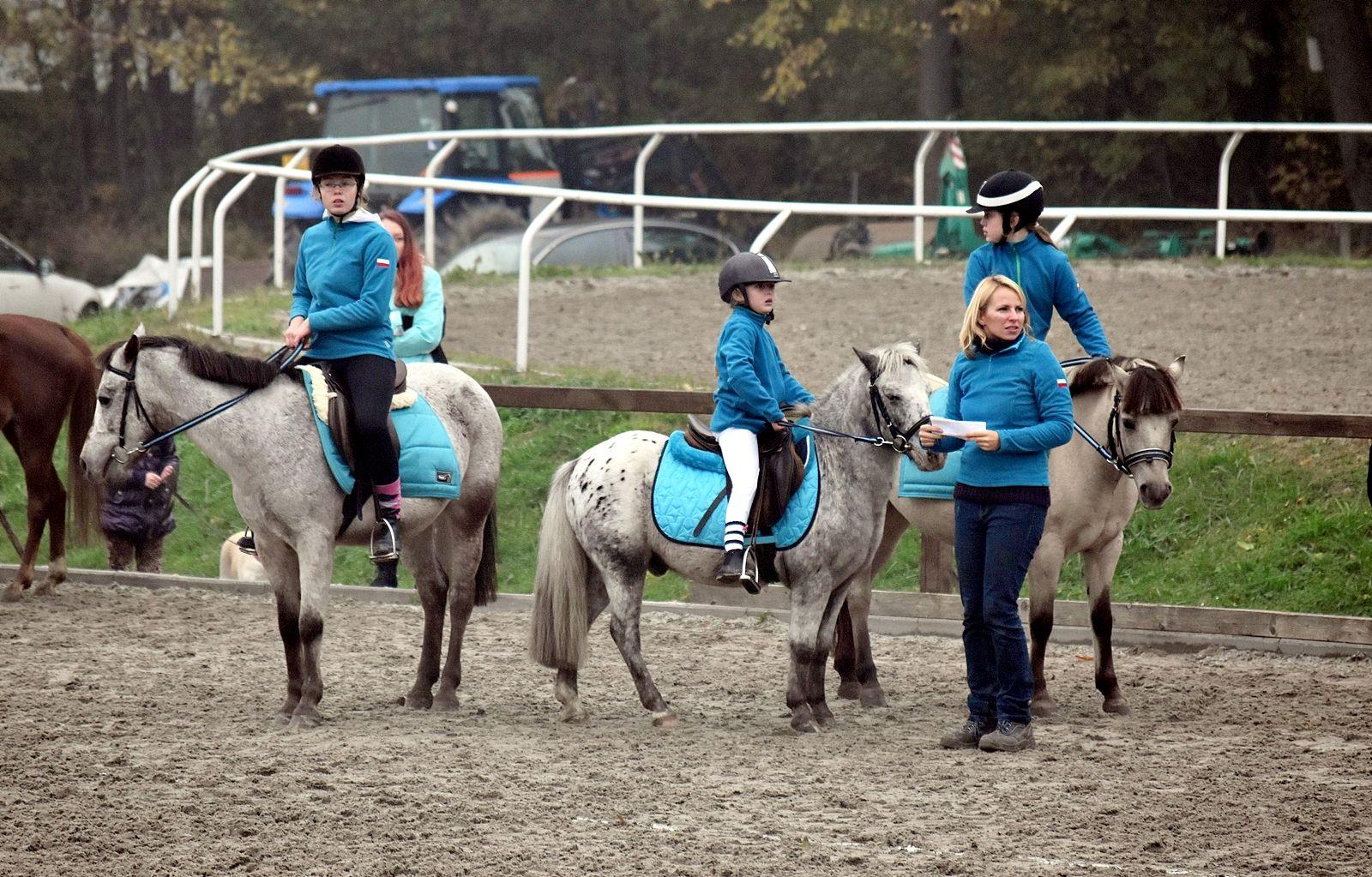 pony-profit-17