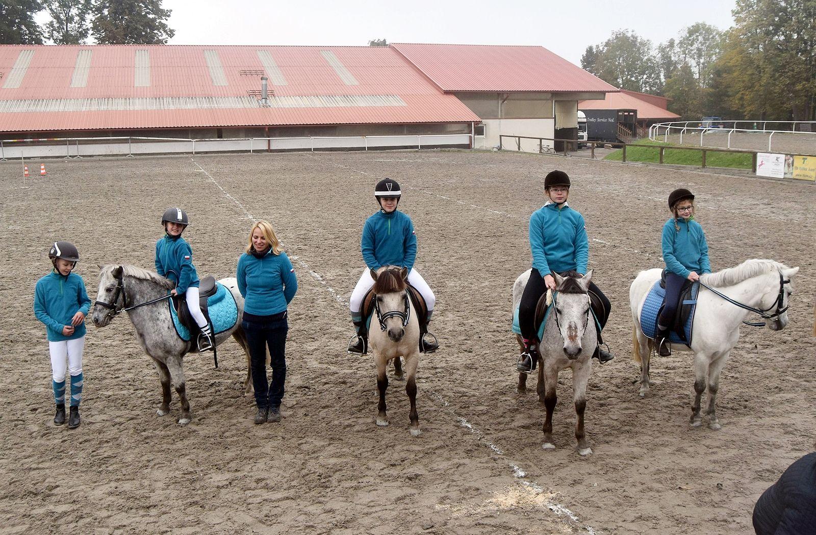 pony-profit-30