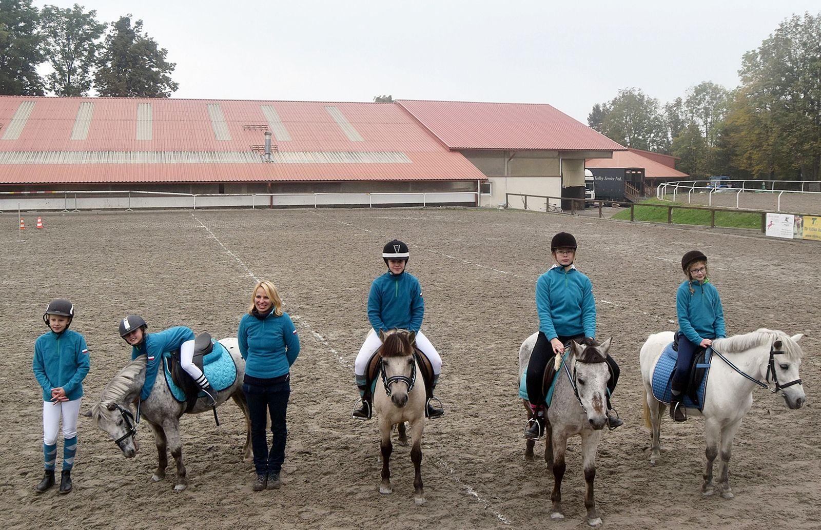 pony-profit-31