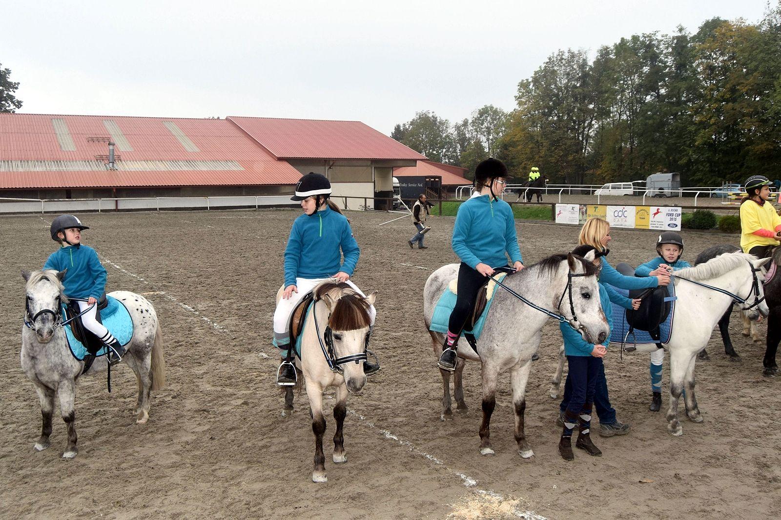 pony-profit-32