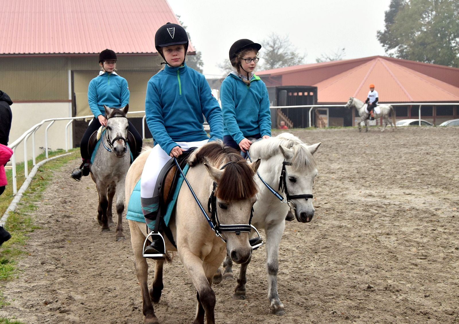 pony-profit-7