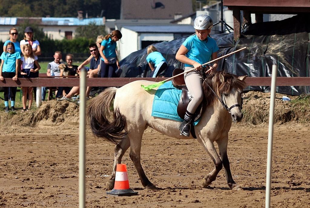 IMG_1713-pony-games-profit