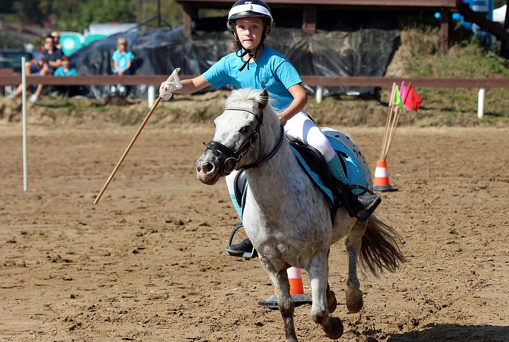 IMG_1732-pony-games-profit