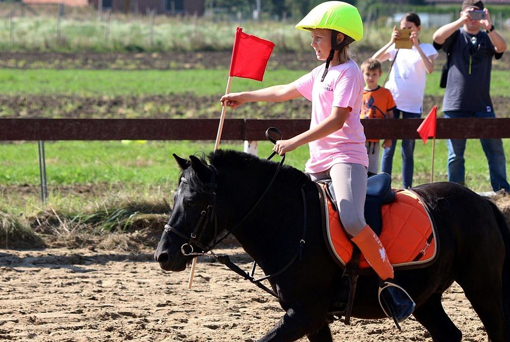 IMG_1736-pony-games-profit
