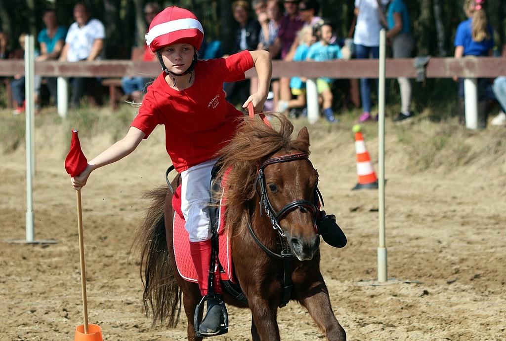 IMG_1949-pony-games-profit