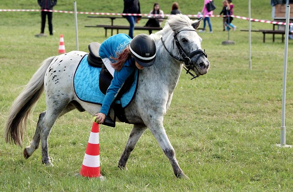 profit-pony-games-100
