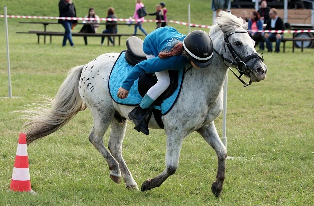 profit-pony-games-101