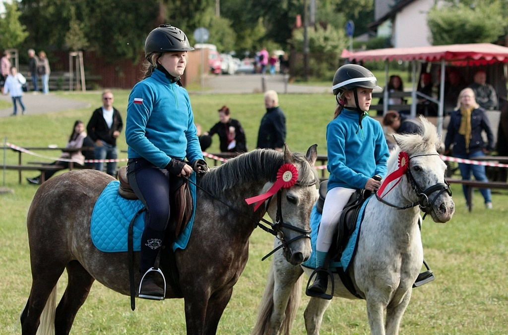 profit-pony-games-106