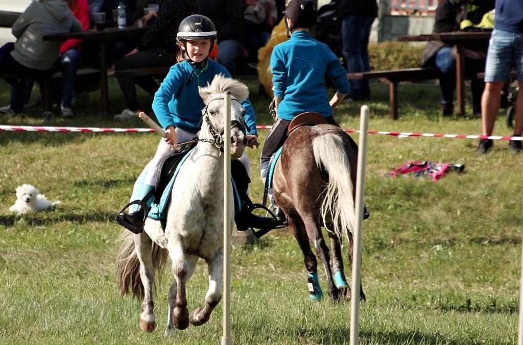 profit-pony-games-14