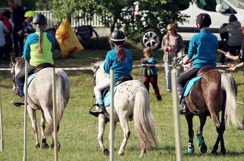 profit-pony-games-2