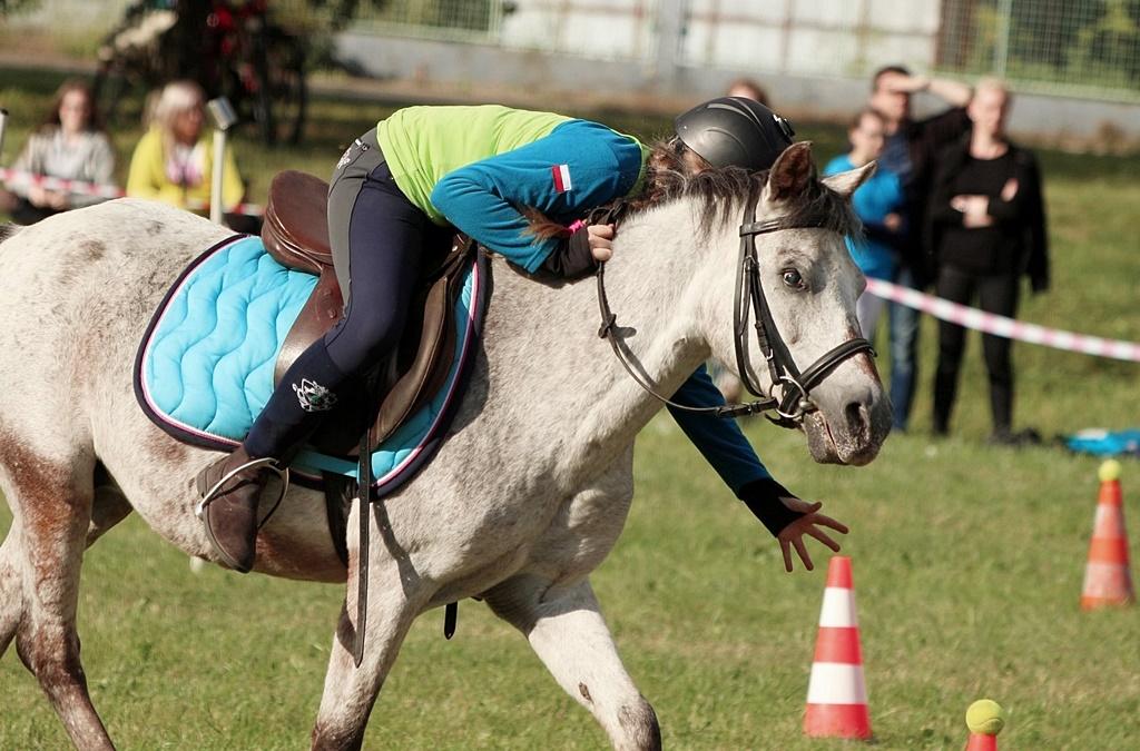 profit-pony-games-44