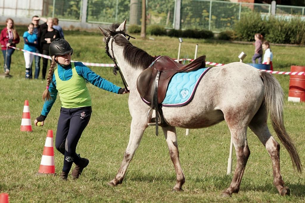 profit-pony-games-46