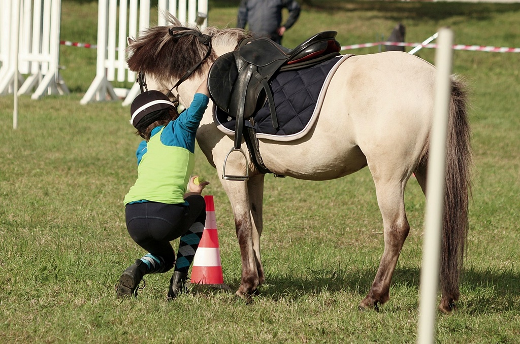 profit-pony-games-53