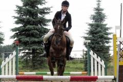 skoki konie profit 10