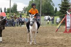 skoki konie profit 14